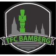 Logo TFC Bamberg 4